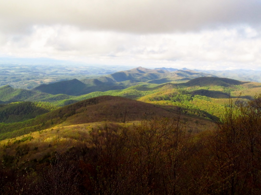 The view north of the Blue Ridge from Bluff Mountain