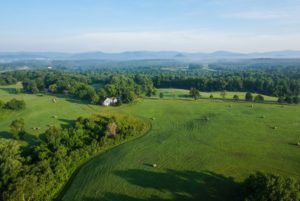 Read more about the article WanderLove: A Guide to a Girl's Weekend in Charlottesville