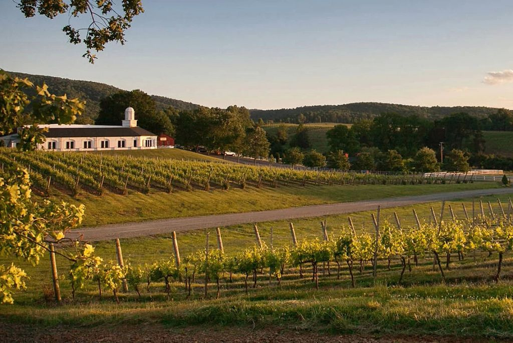The Best Virginia Wines: 2021 Governor's Cup Case