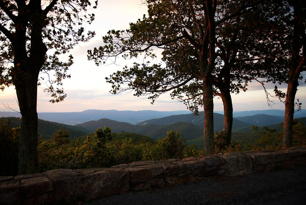 Everything You Need to Know About Camping in Shenandoah National Park