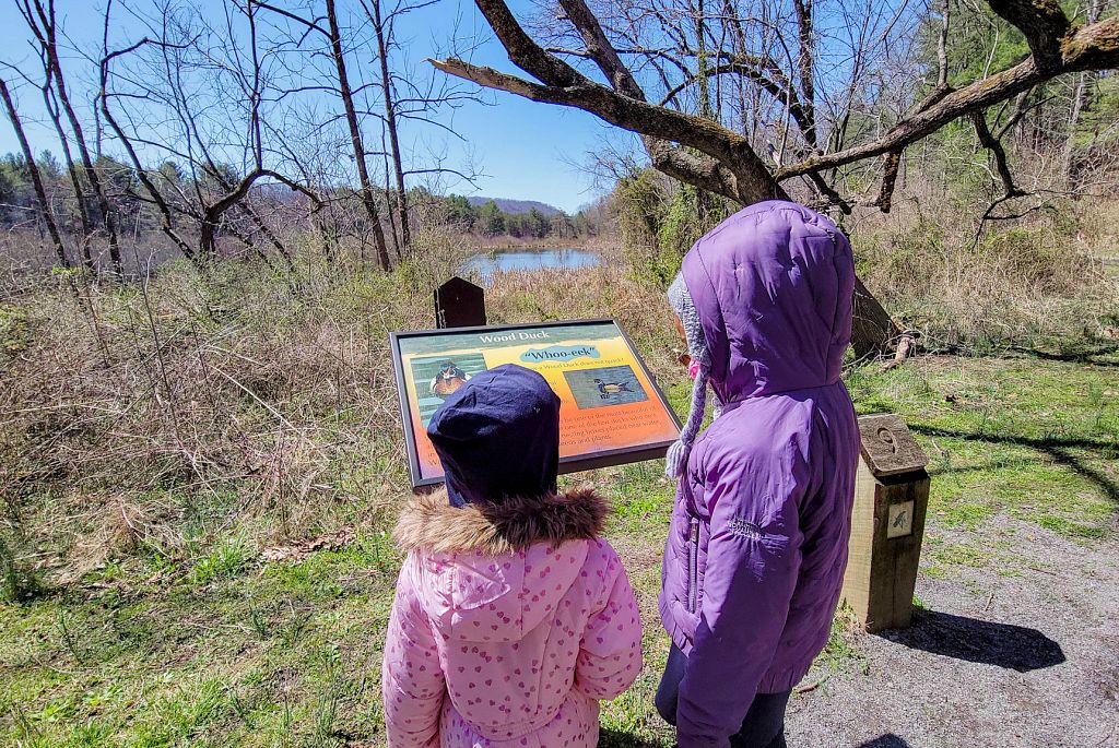 Read more about the article Safe Summer Adventures: 30+ Outdoor Activities for Kids