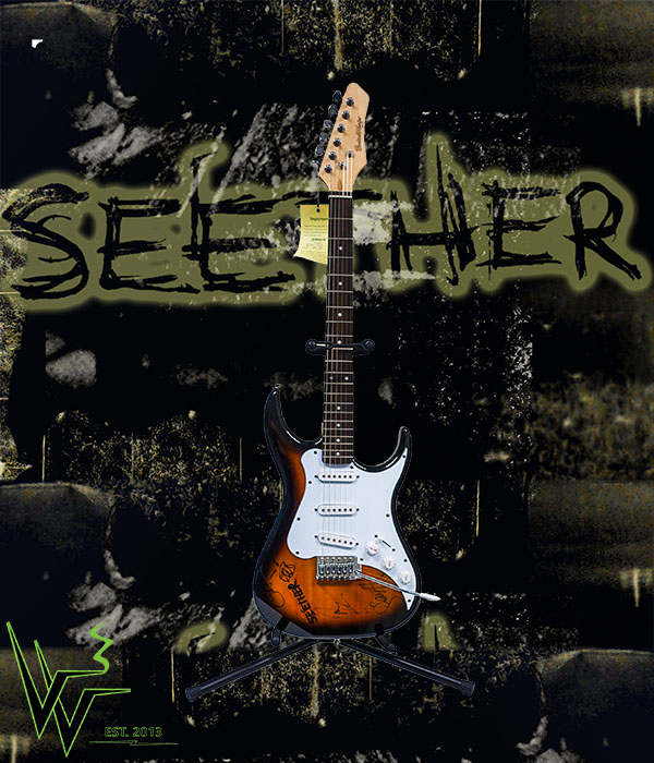 Seether Guitar Reduced