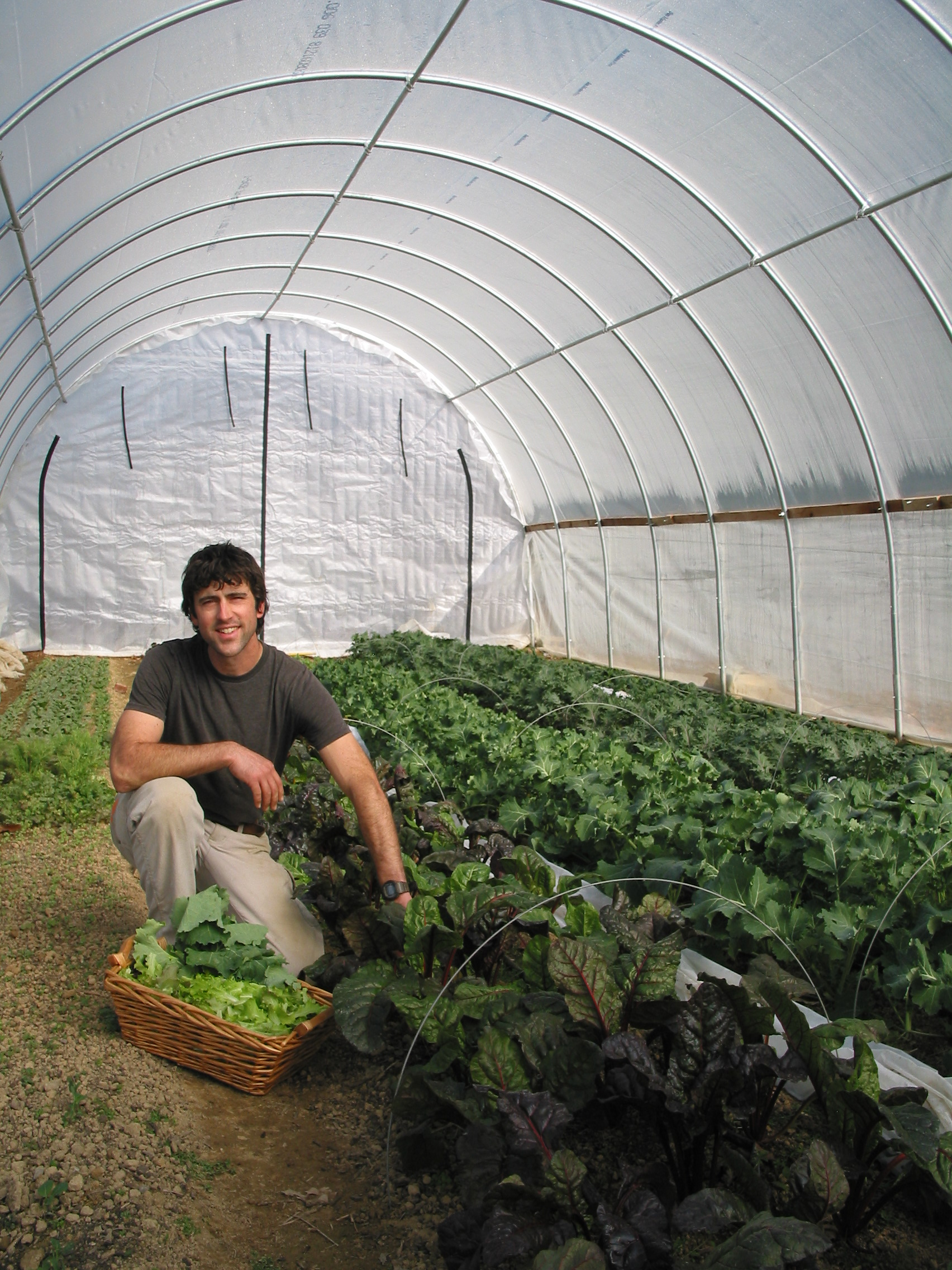 Winter hoop houses enable year-long growing for Harvest Table Restaurant.