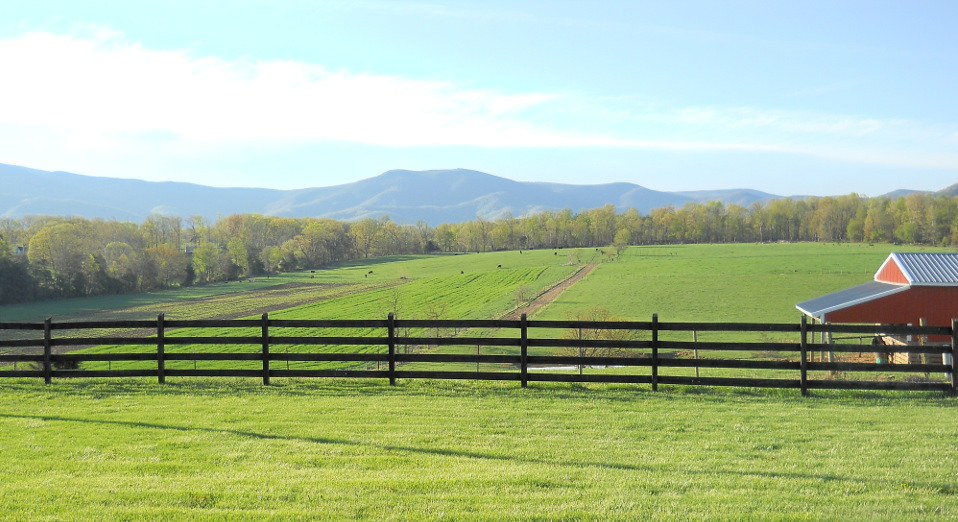 The view from Piney Hill Bed & Breakfast and Cottages