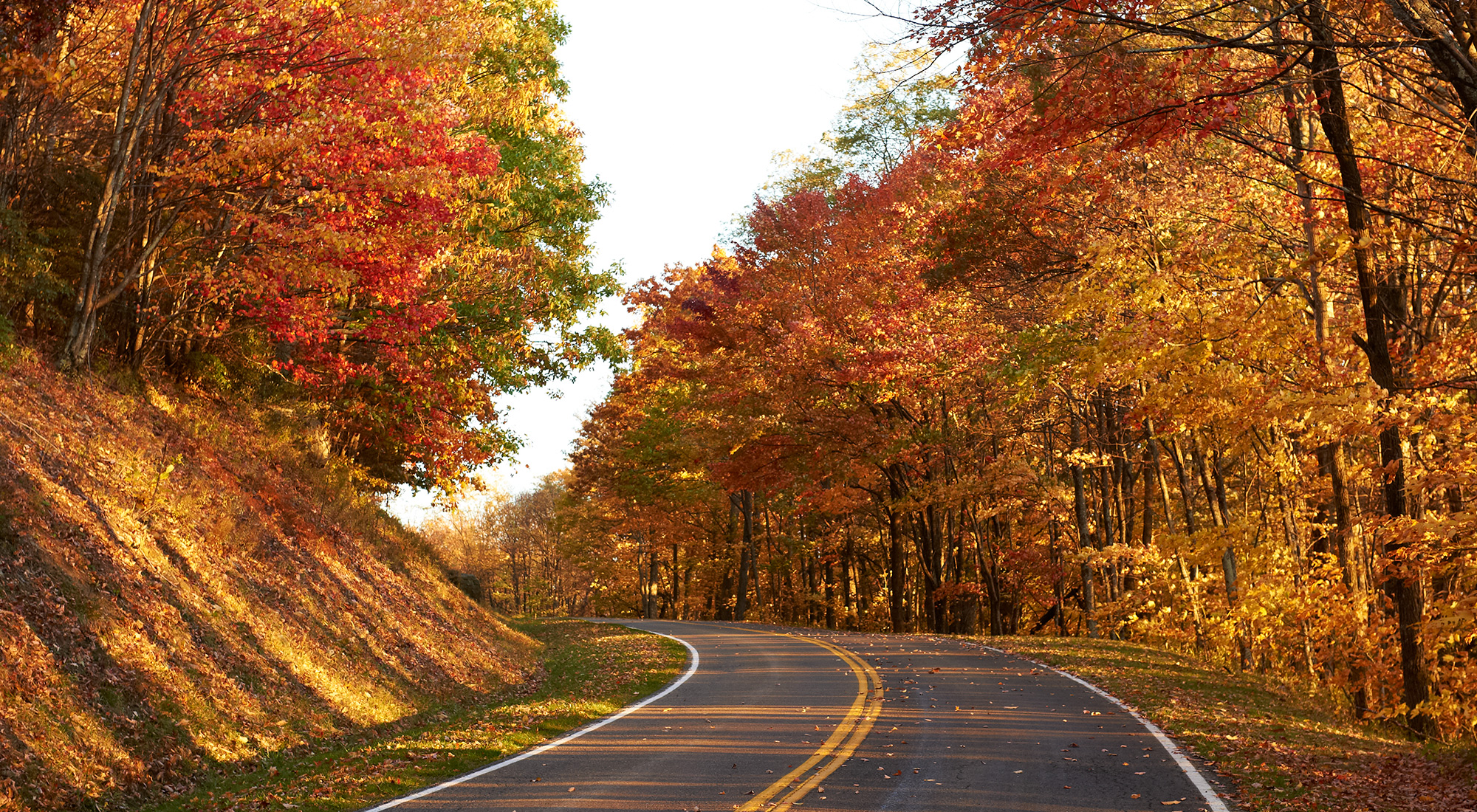 Try Virginia's Scenic Drives!