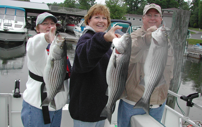 Fish Caught in Smith Mountain Lake.